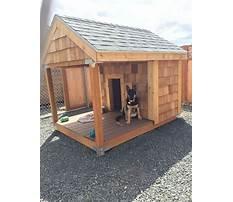 Build dog house.aspx Video