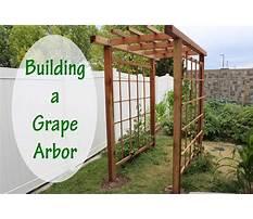 Building a arbor.aspx Video