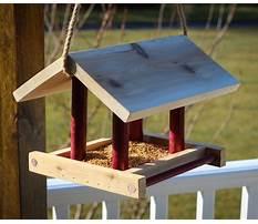 Building simple bird feeders Video
