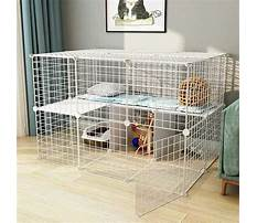 Bunny cages indoor diy Video
