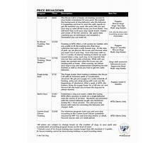 Business plan sample dog training Video