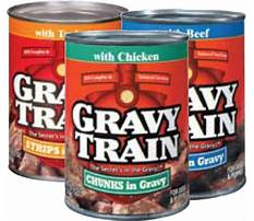 Can a dog eat dry gravy train Video