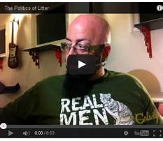 Can you use cat litter to potty train a dog.aspx Video