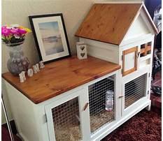 Cheap indoor rabbit hutch diy door Video