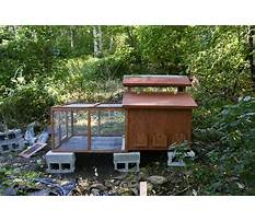 Chicken coop design cold winter Video