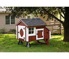 Chicken coops on wheels for sale uk Video
