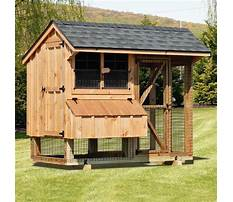 Chicken houses design quotes Video