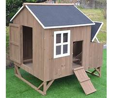 Chicken houses pictures Video