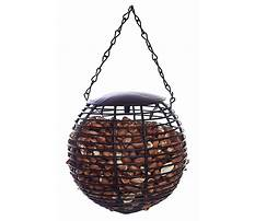Circular peanut bird feeder Video