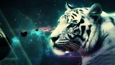 Cool Desktop Backgrounds Tiger