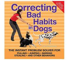 Correcting dog barking Video