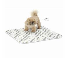 Crate toilet training for dogs.aspx Video
