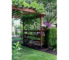 Creative grape arbor plans with swing Video
