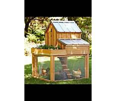 Directions for building a small chicken coop Video