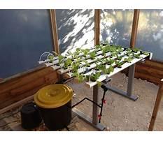 Diy hydroponics system plans.aspx Video
