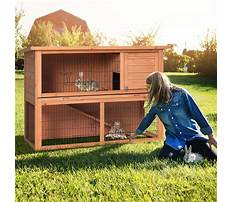 Diy large rabbit cage Video