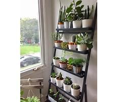 Diy plant shelf.aspx Video