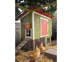 Diy urban chicken coop plans Video