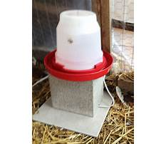 Do it yourself chicken coops.aspx Video