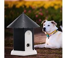 Dog barking deterrents that work Video