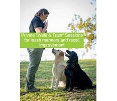 Dog behaviour training wollongong.aspx Video