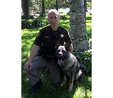 Dog obedience training kenosha wi.aspx Video