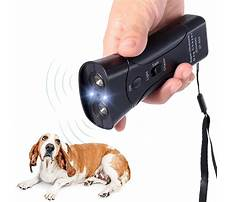 Dog stop barking device Video