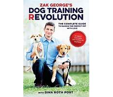 Dog train book Video