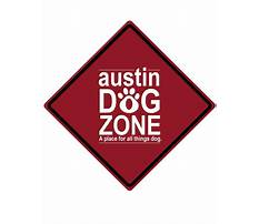 Dog training academy for dogs.aspx Video