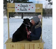 Dog training brainerd mn.aspx Video