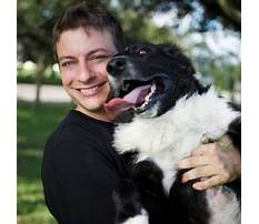 Dog training cbbc Video