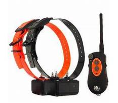 Dog training collars dt systems.aspx Video