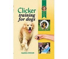 Dog training consistency family karen pryor.aspx Video