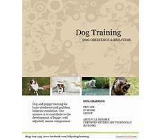 Dog training craigslist Video
