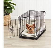 Dog training crate Video
