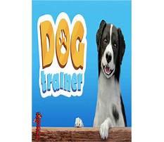 Dog training download Video