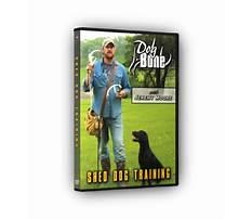 Dog training dvd amazon Video