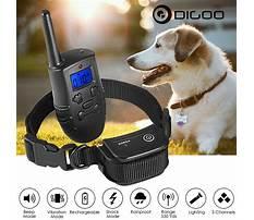 Dog training e collar Video