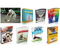 Dog training ebook in hindi Video