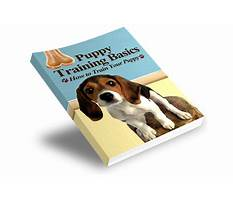 Dog training ebooks collection Video