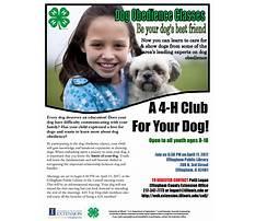 Dog training effingham il Video