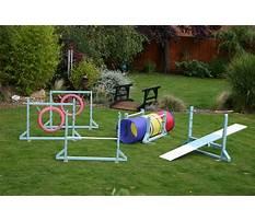 Dog training equipment australia Video