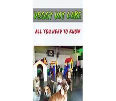 Dog training etobicoke Video