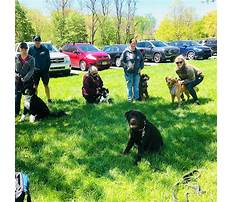 Dog training in pa.aspx Video