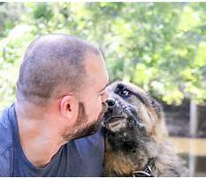Dog training orlando rates Video