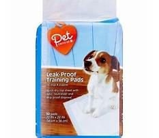 Dog training pads cvs Video