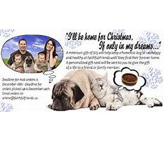 Dog training schools in wilmington delaware.aspx Video