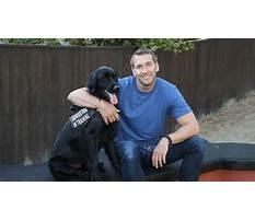 Dog training show cbs Video