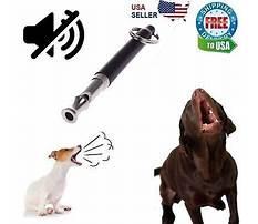 Dog training sound effects Video