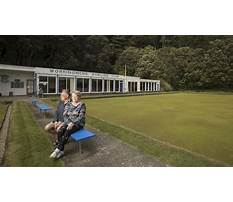 Dog training wellington Video